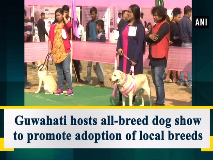 Guwahati hosts all-breed dog show to promote adoption of local breeds