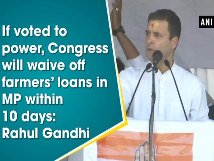 If voted to power, Congress will waive off farmers' loans in MP within 10 days: Rahul Gandhi