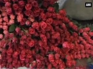 Indians resort to dating on V-day to avoid 'single' stigma