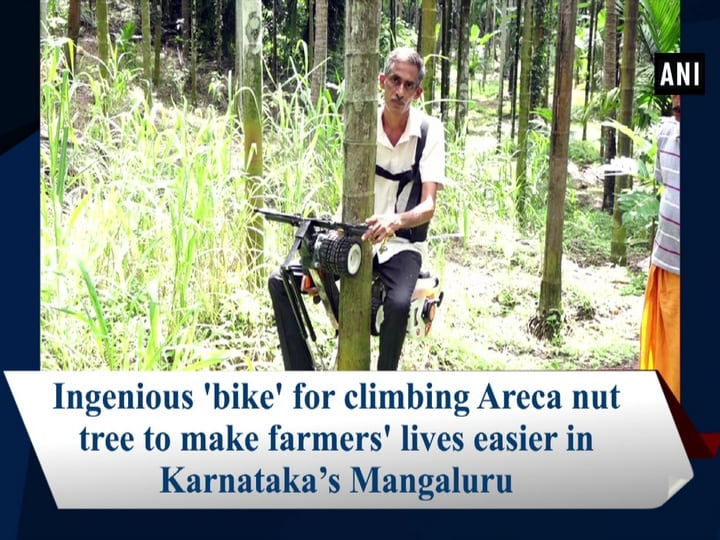 Ingenious 'bike' for climbing Areca nut tree to make farmers' lives easier in Karnataka's Mangaluru