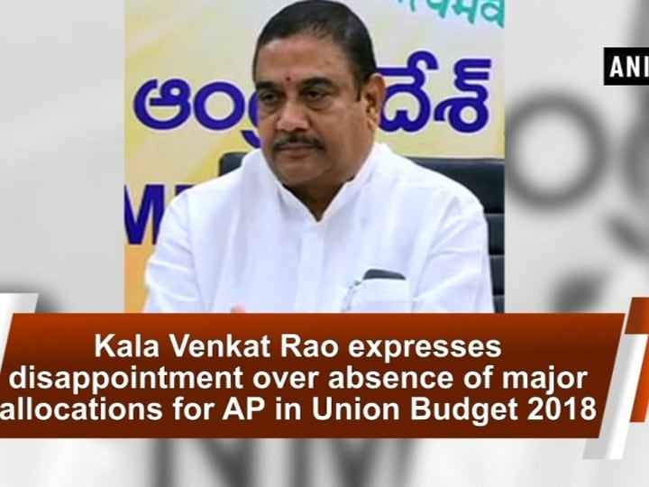 Kala Venkat Rao expresses disappointment over absence of major allocations for AP in Union Budget 2018
