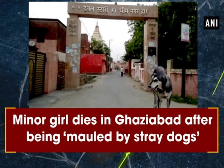 Minor girl dies in Ghaziabad after being 'mauled by stray dogs'