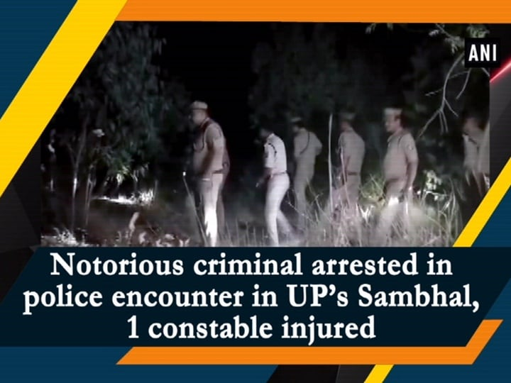 Notorious criminal arrested in police encounter in UP's Sambhal, 1 constable injured