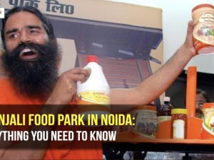 Patanjali Food Park in Noida: Everything you need to know