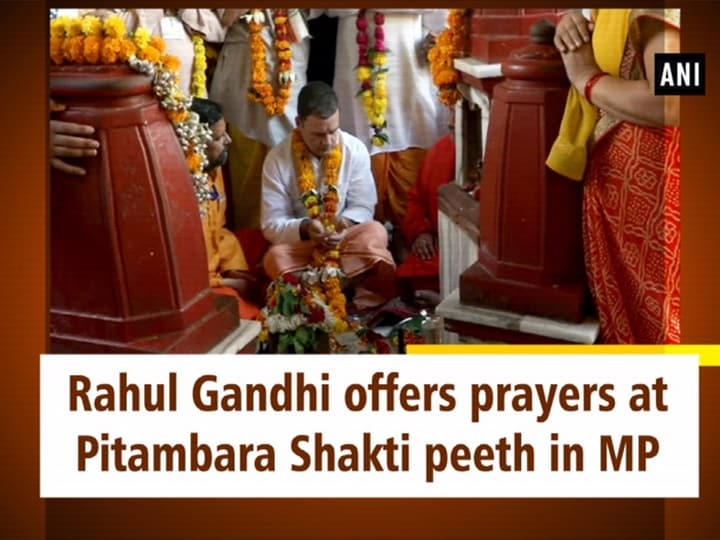 Rahul Gandhi offers prayers at Pitambara Shakti peeth in MP
