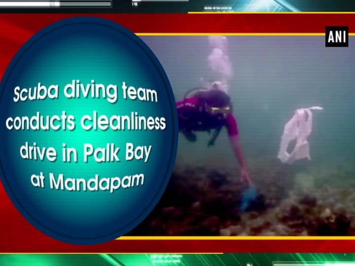 Scuba diving team conducts cleanliness drive in Palk Bay at Mandapam