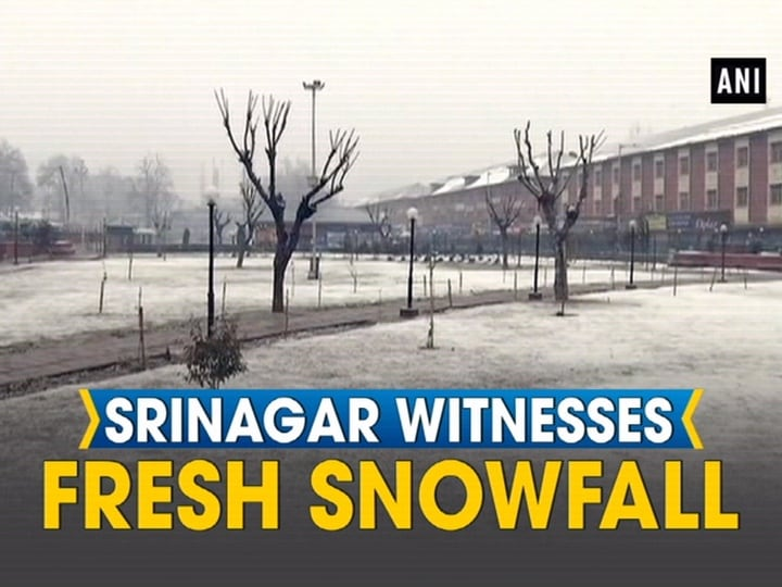 Srinagar witnesses fresh snowfall