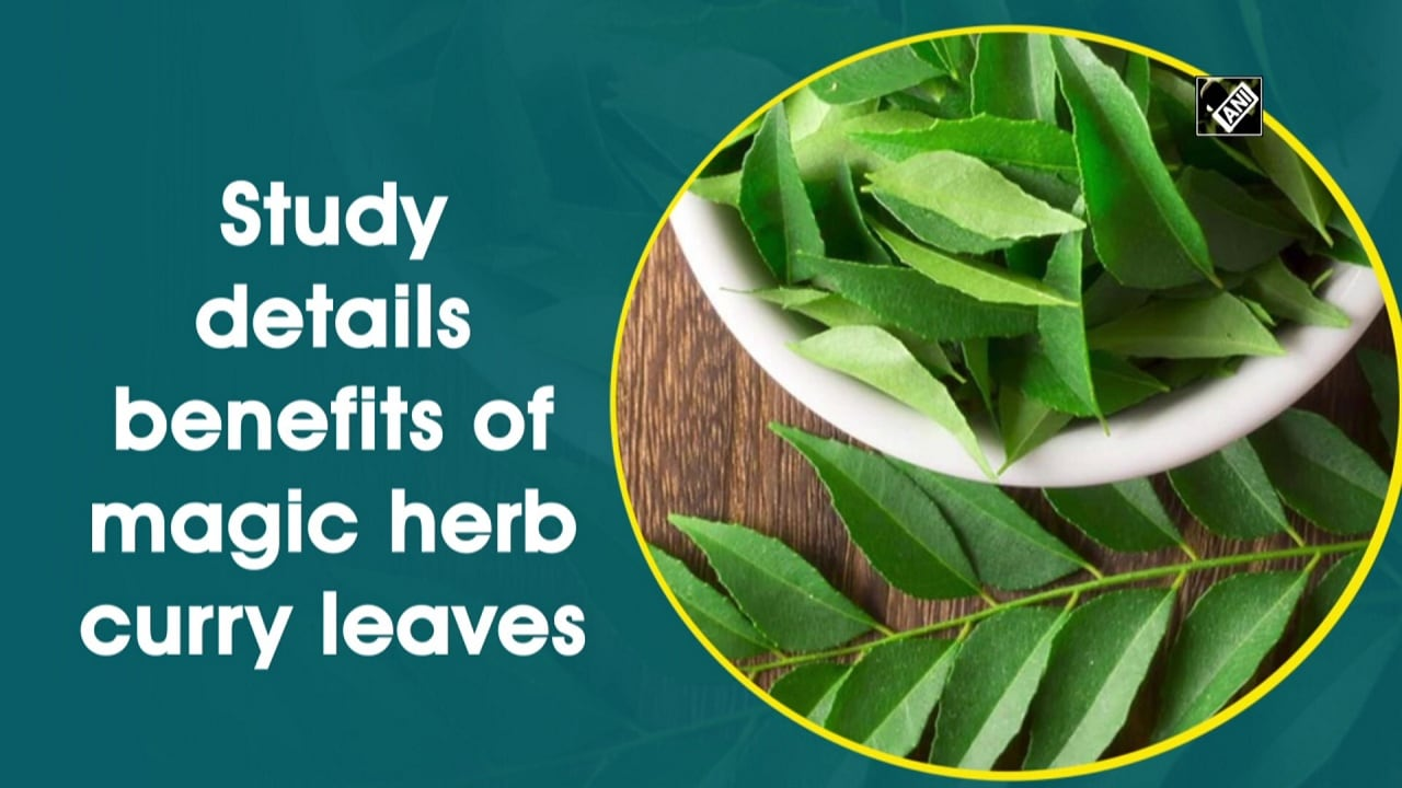 Study details benefits of magic herb curry leaves
