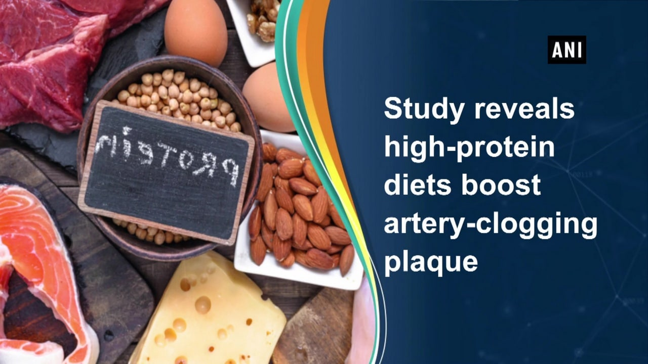 Study reveals high-protein diets boost artery-clogging plaque