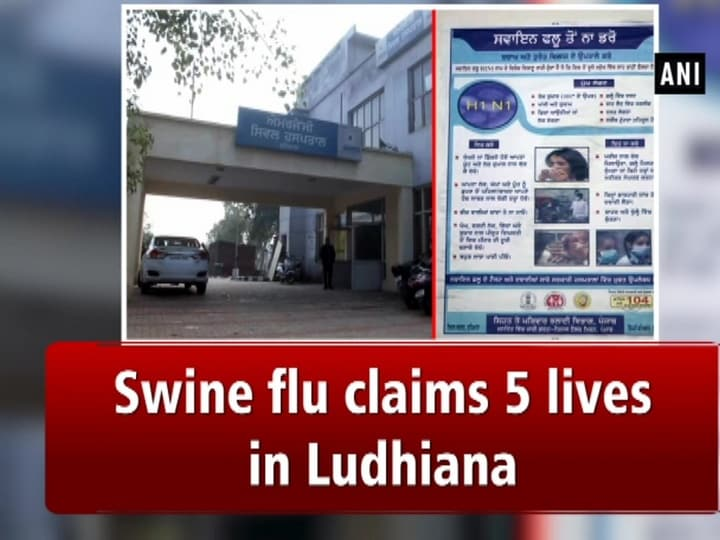 Swine flu claims 5 lives in Ludhiana