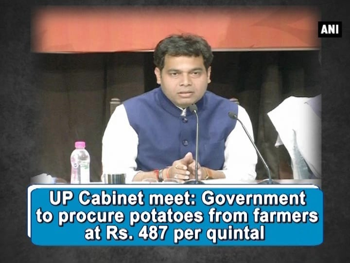 UP Cabinet meet: Government to procure potatoes from farmers at Rs. 487 per quintal