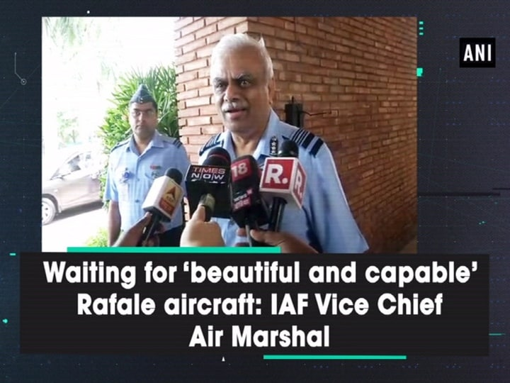 Waiting for 'beautiful and capable' Rafale aircraft: IAF Vice Chief Air Marshal