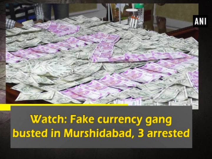 Watch: Fake currency gang busted in Murshidabad, 3 arrested