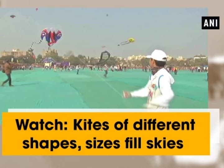 Watch: Kites of different shapes, sizes fill skies