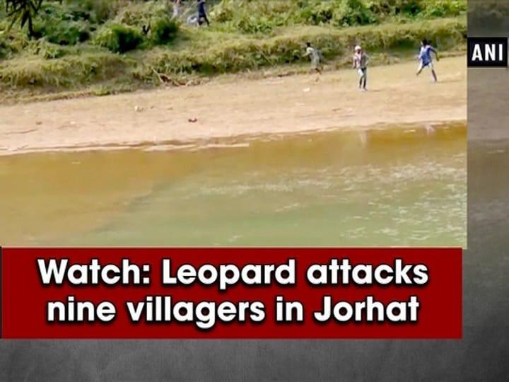 Watch: Leopard attacks nine villagers in Jorhat