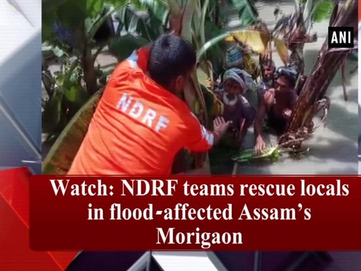 Watch: NDRF teams rescue locals in flood-affected Assam's Morigaon