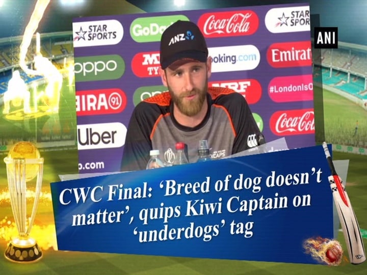 CWC Final: 'Breed of dog doesn't matter', quips Kiwi Captain on 'underdogs' tag
