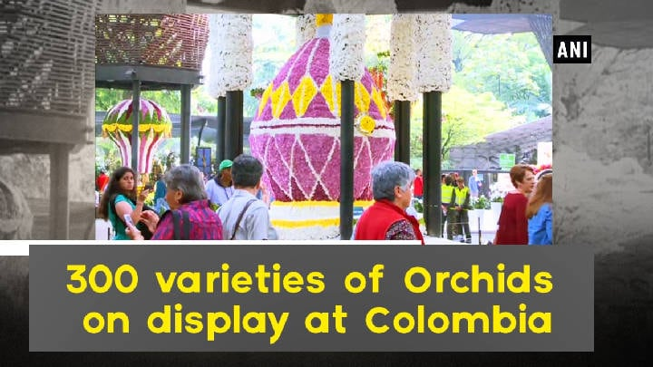 300 varieties of Orchids on display at Colombia