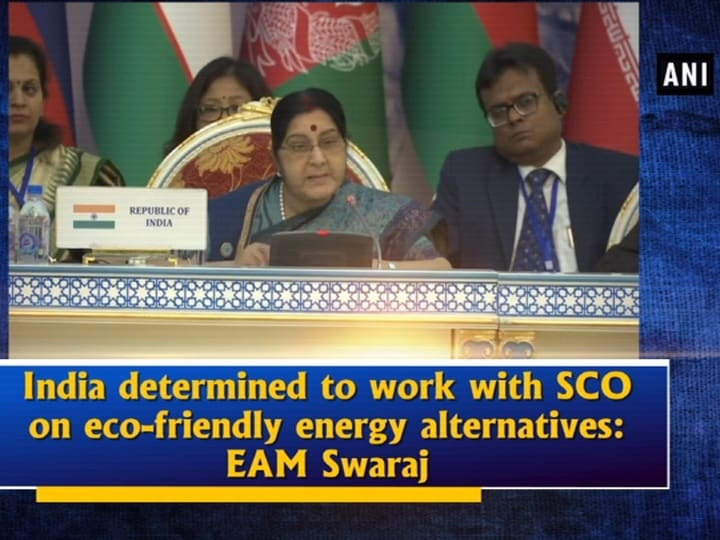 India determined to work with SCO on eco-friendly energy alternatives: EAM Swaraj