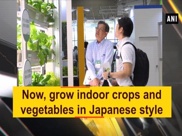 Now, grow indoor crops and vegetables in Japanese style