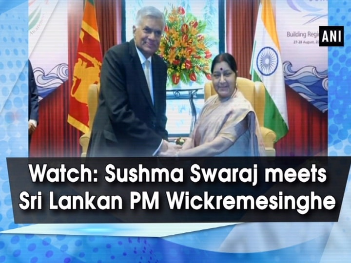 Watch: Sushma Swaraj meets Sri Lankan PM Wickremesinghe