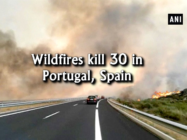 Wildfires kill 30 in Portugal, Spain