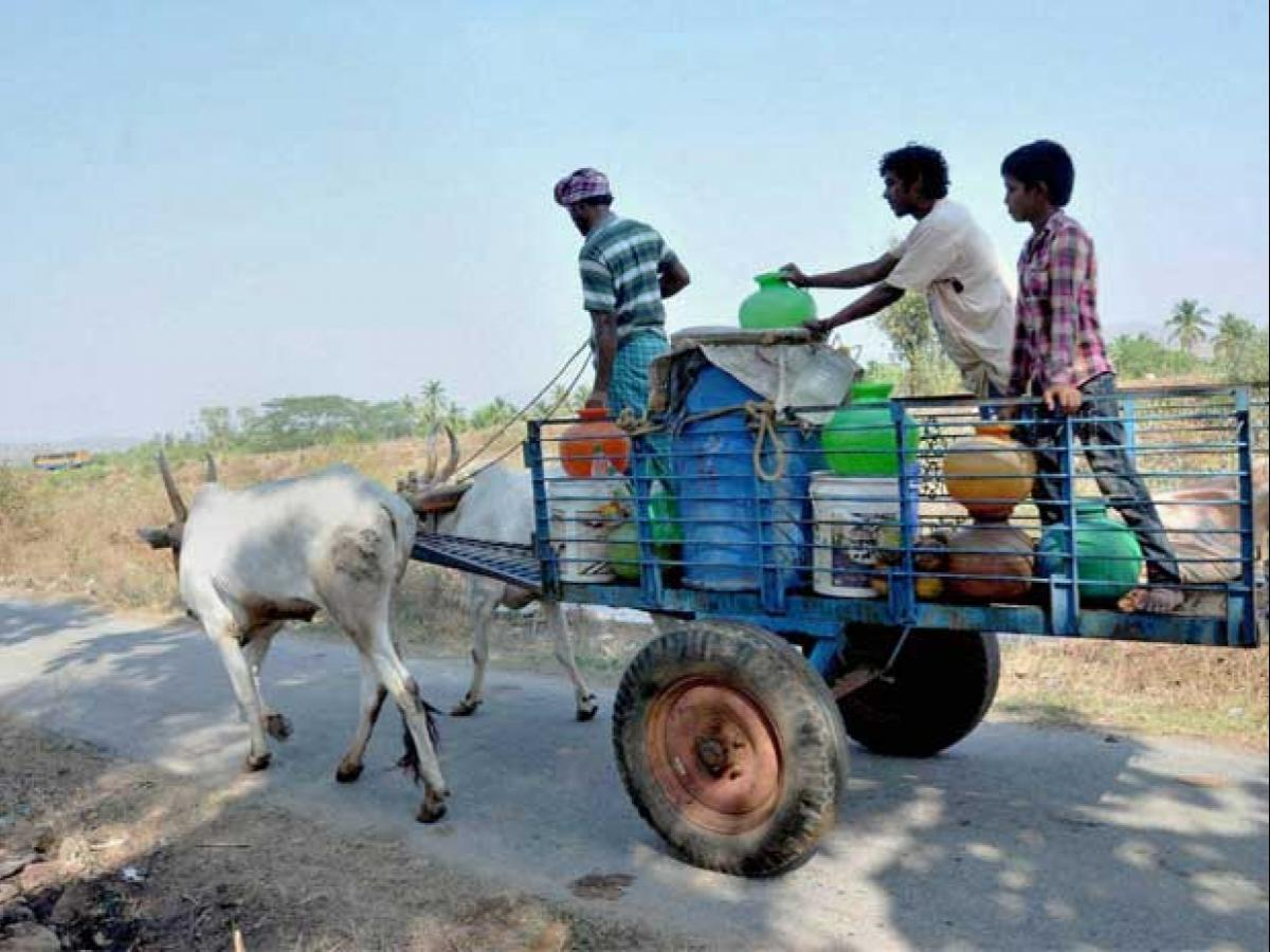 karnataka faces worst drought in  years  business standard news