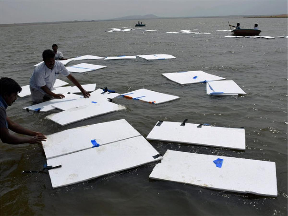Tamil Nadu minister's idea: Float thermocol sheets to prevent
