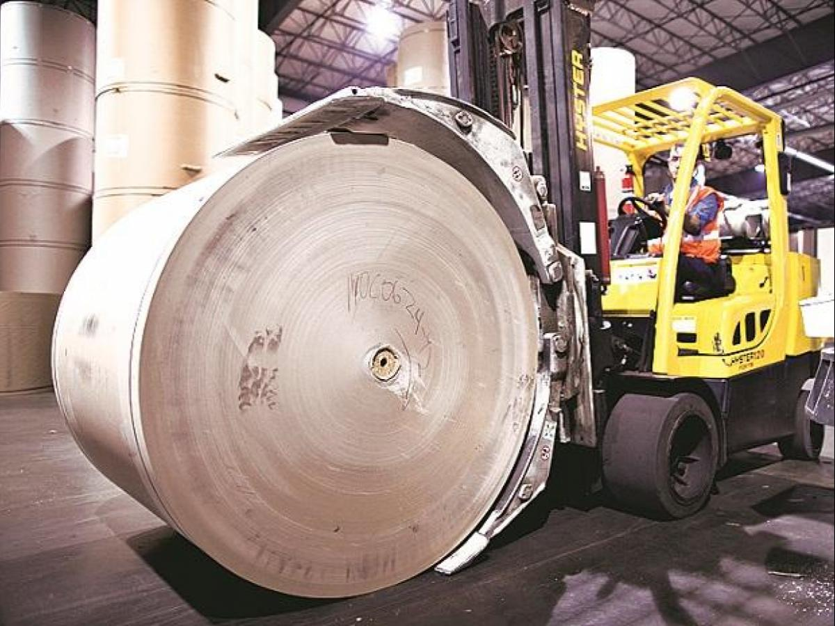 Paper industry wants industrial plantation policy | Business
