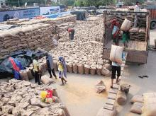 NCML to invest Rs 506 cr in grain silos in India, IFC to back the project