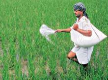 Pesticides Management Bill needs more consultations, say farm experts