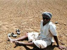 Govt should act fast to check farmers' suicide in Maharashtra: K T S Tulsi