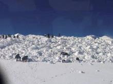 Operations by the specialized teams of the Army and the Air Force in progress to rescue the soldiers hit by an avalanche in Siachen