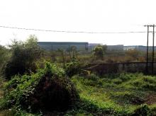 The land in Singur where the Tata plant was supposed to come up (pic: Subrata Majumder)