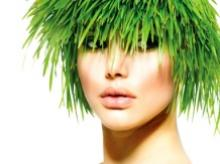 A green hair care solution
