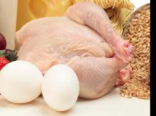 US seeks trade sanctions in India poultry dispute: WTO