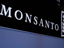Monsanto logo is displayed on a screen where the stock is traded on the floor of the New York Stock Exchange (NYSE) in New York City, US. Photo: Reuters. File photo