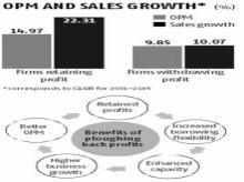 MSMEs can gain from ploughing back profits