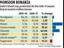 Bumper kharif grain output likely this yr