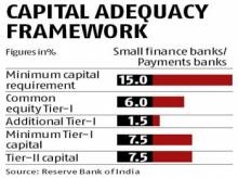 Breather for niche banks on capital, borrowings