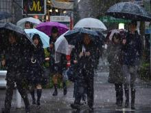 Tokyo gets November snow for first time in 54 years