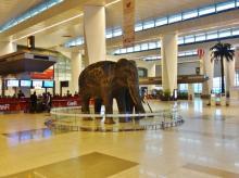 delhi, airport, DIAL, delhi airport