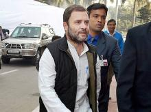 Congress Vice President Rahul Gandhi. Photo: PTI