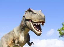 dinosaur, t rex