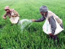 Fertilizers, Farmers