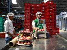 BigBasket plans to open warehouses, each about 20,000-25,000 square feet in size, across eight cities where it caters to different institutions
