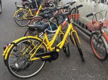 Ofo, bicycle, cycle