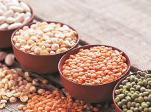 Pulses export policy change to take time to fructify