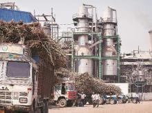 UP govt mulls Brazilian sugar industry model to break sugar lobby monopoly