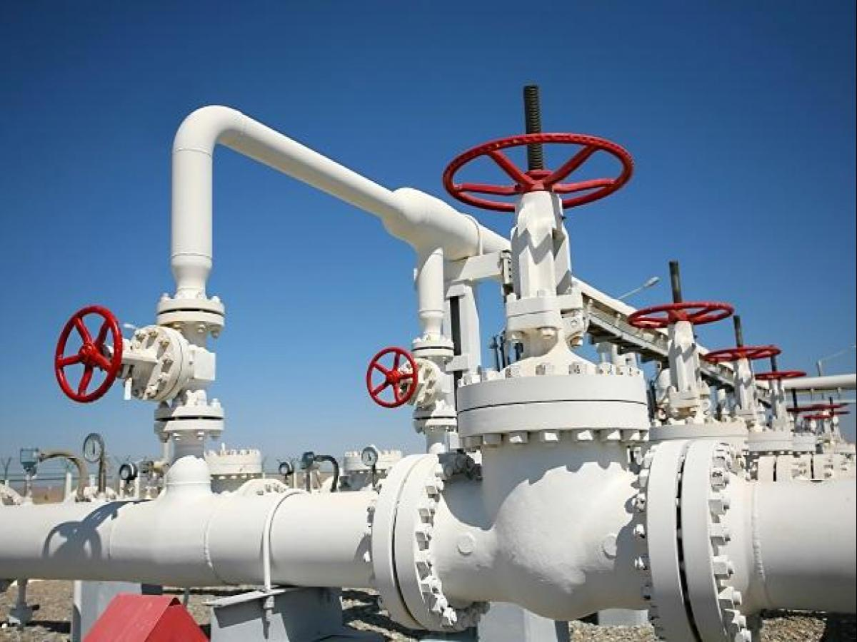 Adani Bags Gas Rights For 21 Cities Bpcl Torrent Gas Other Big Winners Business Standard News